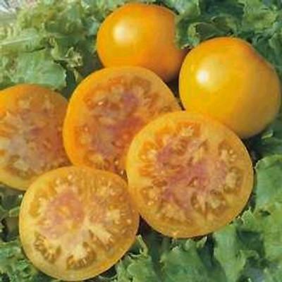 Pink Grapefruit Tomato 15 Seeds -Yellow Skin -LOW ACID!