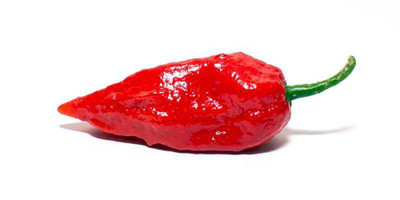 20+ Bhut Jolokia / Naga Morich Seeds - Ghost Pepper