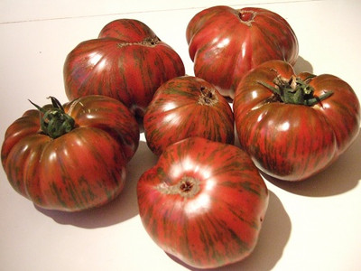 Chocolate Stripes Tomato - 10 Seeds - Heirloom