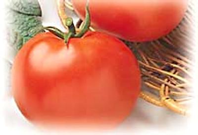 Rutgers Tomato - 200 Seeds - GARDEN FRESH PACK!