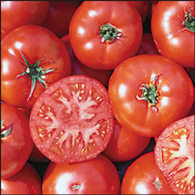 Trophy Tomato - 20 Seeds - Rhode Island Heirloom