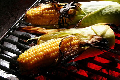 Providence Grillin' Sweet Corn 100 Seeds - Great Flavor - Hirt's Gardens