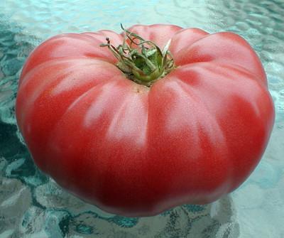 Watermelon Beefsteak Tomato 25 Seeds - Impressive!