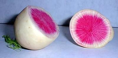Watermelon Radish Seeds - 3 grams