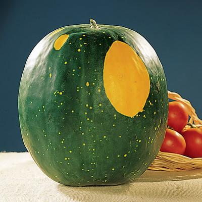 Moon & Stars Watermelon - 35 Seeds