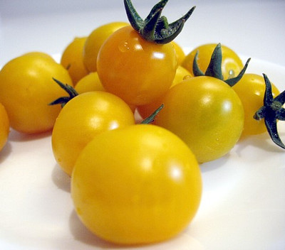 Teacup Yellow Tomato 10 Seeds - Great for Containers!