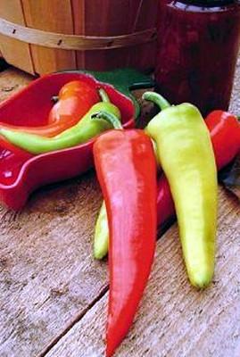 Dante's Hot Pepper 20 Seeds - Long/Medium Hot