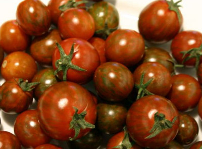 Black Zebra Cherry Tomato 10 Seeds - RARE/HARD TO FIND