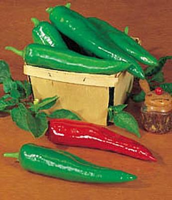 Hot Anaheim Chili Pepper - 100 Seeds