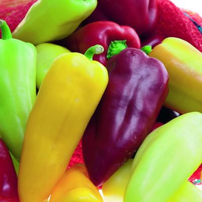 Pretty n Sweet Ornamedible Pepper - 20 Seeds - 2015 All-America Selection