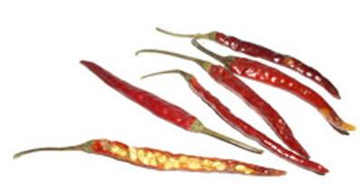 Japones Hot Pepper - 20 Seeds - Super Hot