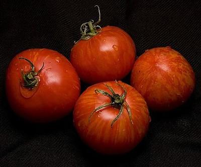 Red Zebra Tomato 15 Seeds - Great Taste - Easy to Grow