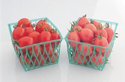 Chaquita Cherry Tomato - 10 Seeds - Deep Pink