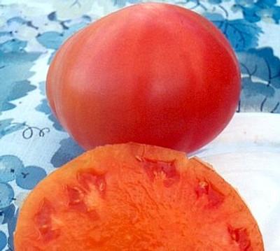 Kellogg's Breakfast Tomato 30 Seeds -Orange - Heirloom