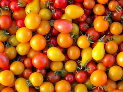 Rainbow Blend Cherry Tomato - 20 Seeds
