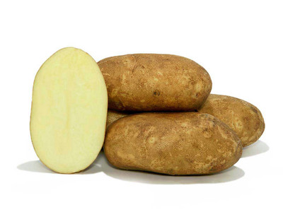 Kennebec Potato - 2 lbs Certified Seed (Tuber)