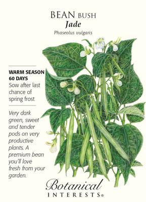 Jade Bush Bean Seeds - 20 grams - Botanical Interests