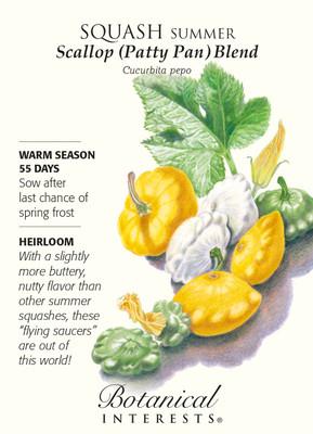 Summer Scallop Blend Squash Seeds - 3 grams