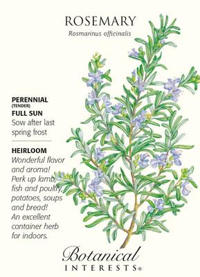 Rosemary - 30 Seeds - Heirloom/Perennial