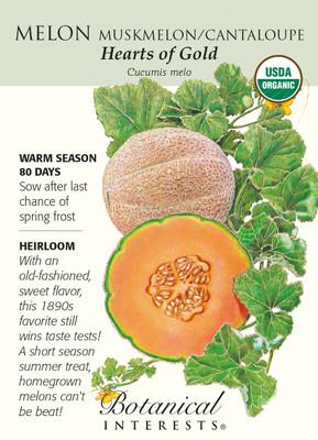 Hearts of Gold Melon Seeds - 1 gram - Organic