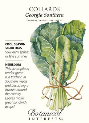 Georgia Southern Collards Seeds - 3 grams - Heirloom