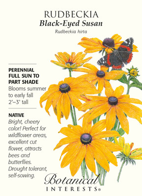 Black Eyed Susan Seeds - 750 mg - Rudbeckia