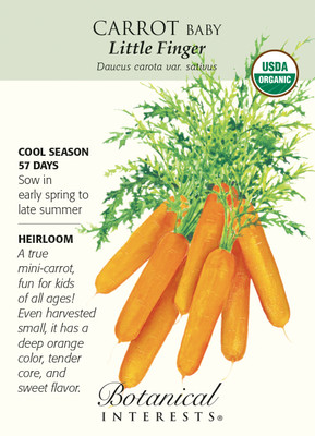 Little Finger Baby Carrot Seeds-1 g-Certifield Organic