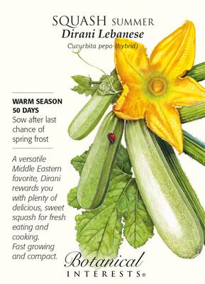 Dirani Lebanese Summer Squash Seeds - 2 grams - Botanical Interests