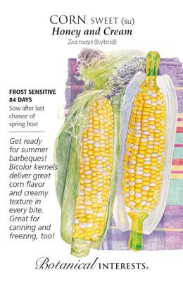 Honey and Cream Sweet Corn Seeds - 10 Grams
