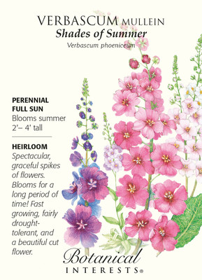 Shades of Summer Verbascum Mullein Seeds - 400 mg