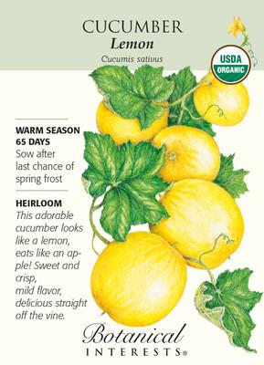Lemon Cucumber Seeds - 1 gram - Organic