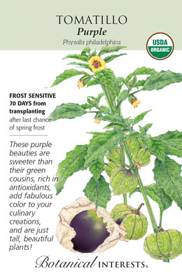 Organic Purple Tomatillo Seeds - 150 Milligrams - Botanical Interests