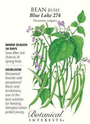 Blue Lake 274 Bush Bean Seeds - 25 grams