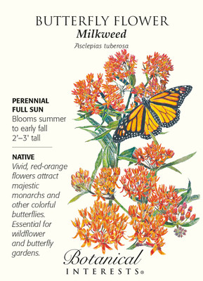 Butterfly Flower Seeds - 200 mg - Asclepias