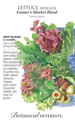 Farmer's Market Blend Mesclun Lettuce Seeds - 4.5 Grams - Botanical Interests