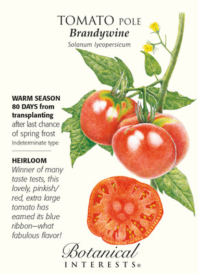 Brandywine Pole Tomato - 30 Seeds - Heirloom