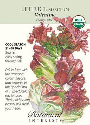Valentine Mesclun Lettuce Seeds - 1 gram - Organic