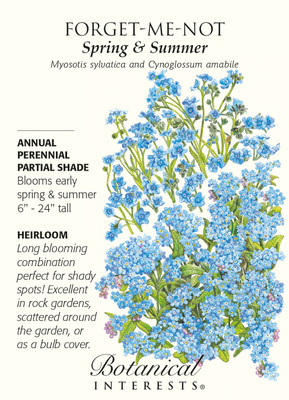 Spring & Summer Forget-Me-Not Seeds - 800 mg