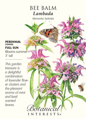 Lambada Bee Balm Seeds - 50 mg - Monarda