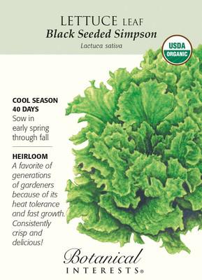Black Seeded Simpson Lettuce Seeds - 1 gram - Organic