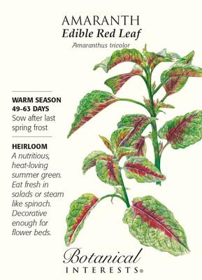Edible Red Leaf Amaranth Seeds - 500 mg