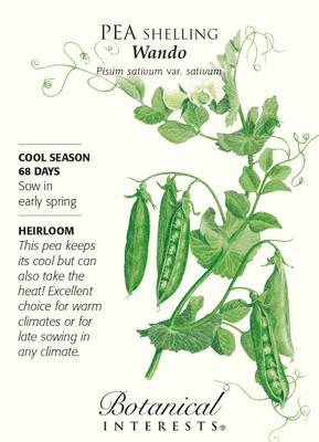 Wando Shelling Pea Seeds - 25 grams - Pisum sativum