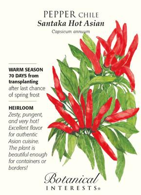 Santaka Hot Asian Chile Pepper Seeds - 30 Seeds