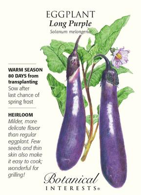 Long Purple Eggplant Seeds - 500 mg - Heirloom