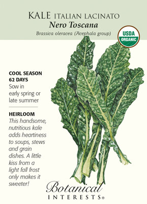 Italian Nero Toscana Kale Seeds - 0.50 Grams - Organic - Botanical Interests