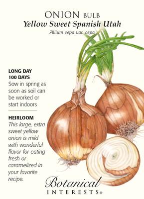 Yellow Sweet Spanish Utah Onion Seeds - 1 gram