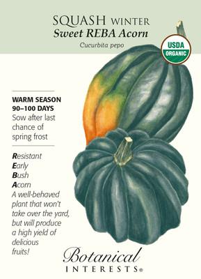 Organic Sweet REBA Acorn Winter Squash Seeds - 1.5 grams - Botanical Interests
