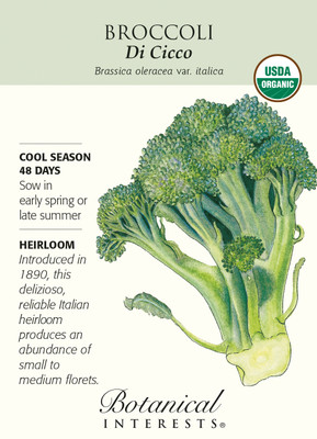 Di Cicco Broccoli Seeds - 2 grams - Certified Organic