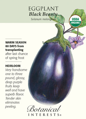 Black Beauty Eggplant Seeds-500 mg-Certified Organic