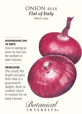 Flat of Italy Onion Seeds - 750 mg - Heirloom